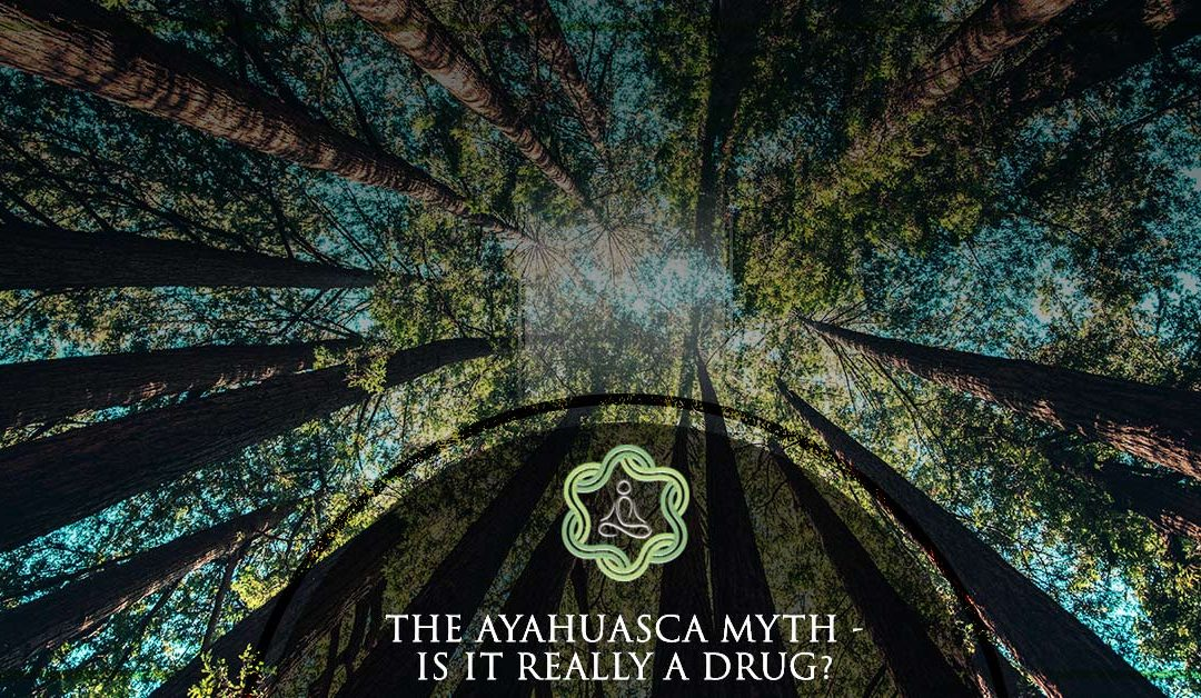 The Ayahuasca Myth – is it really a Drug?