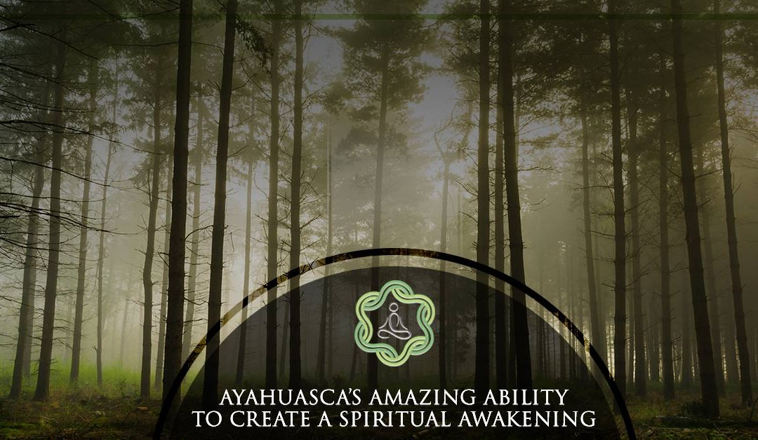 Ayahuasca's Amazing Ability to Create a Spiritual Awakening