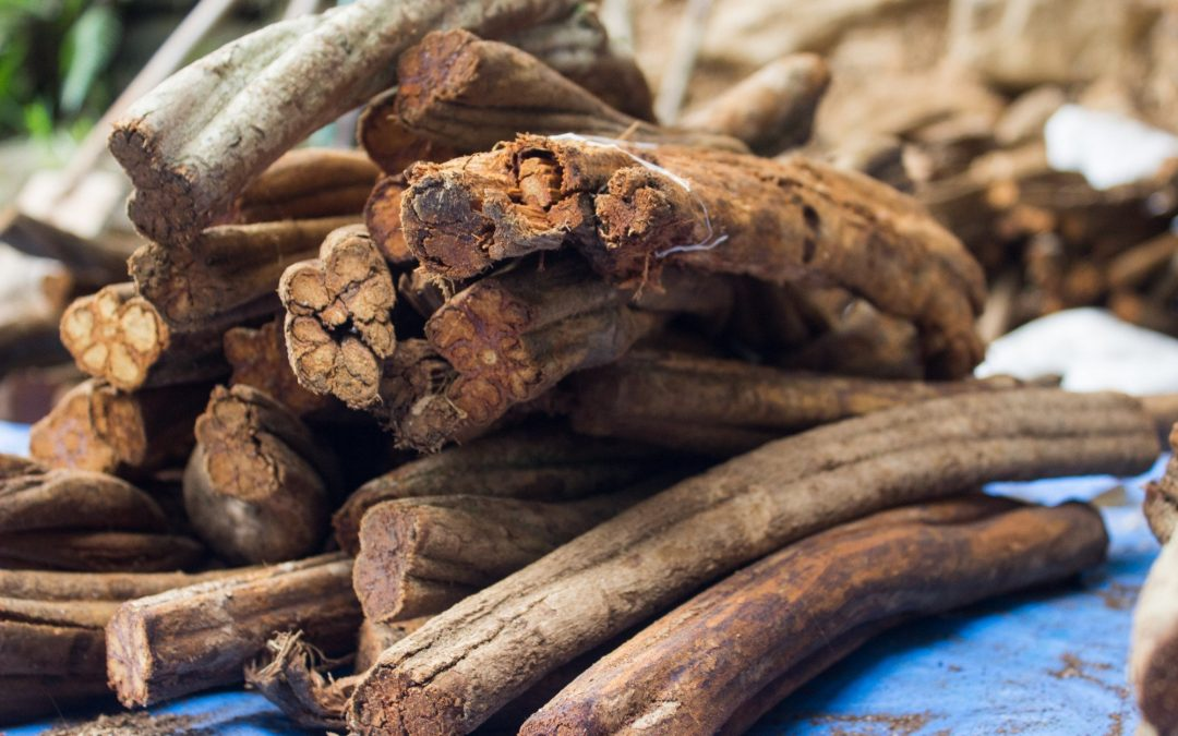 How Long Does Ayahuasca Last? (And Other Important Questions)